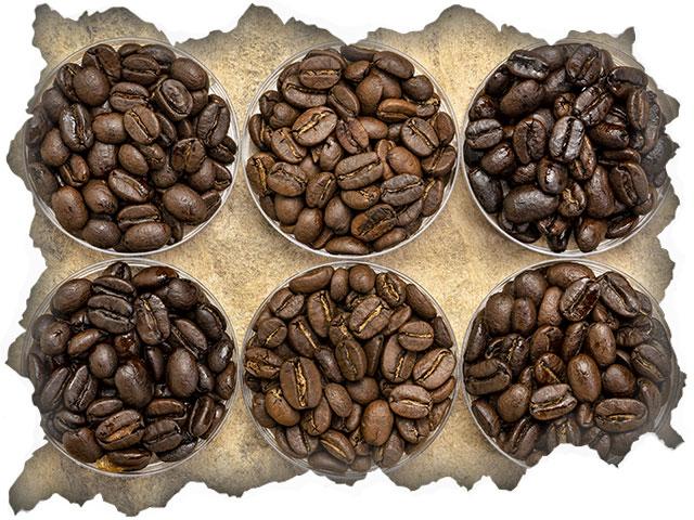Rodzaje kawy Arabica z Etiopii
